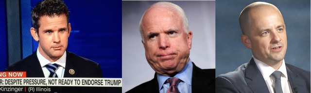 Kinzinger McCain McMullin